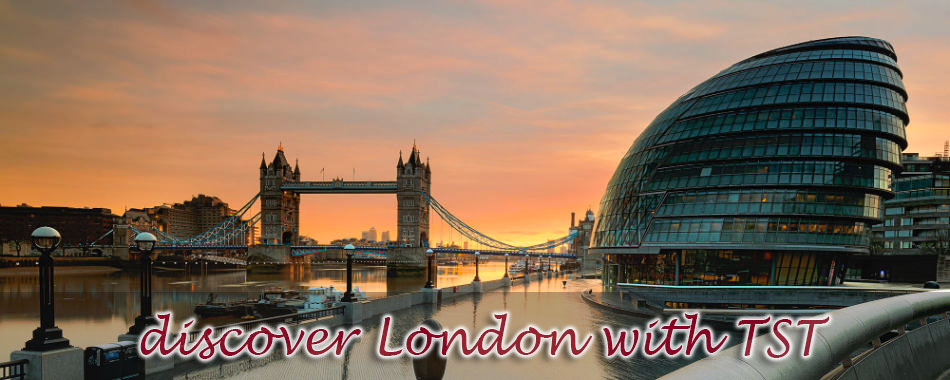 Take a Tour in London with TST Car Services